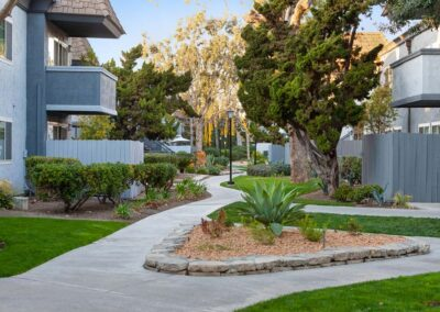 Walk ways with nature plant trees and green grass