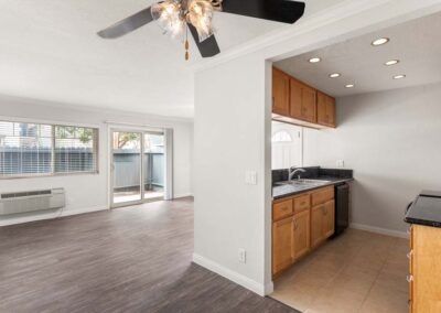 Kitchen and living room open spaces