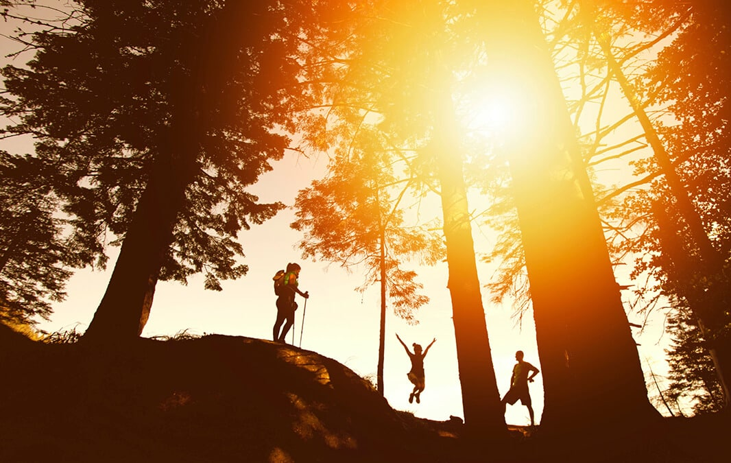 a silhouette of three people on a hike surrounded by trees